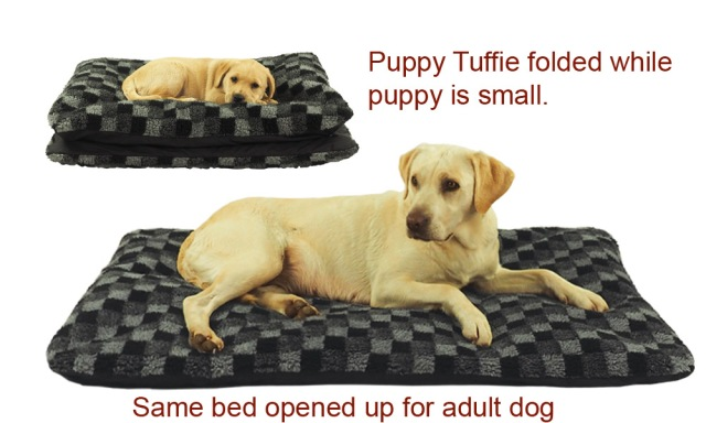 PuppyTuffiewithLabradorcopy